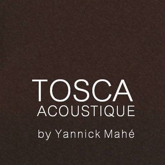 logo_TOSCA_fb_by_ym